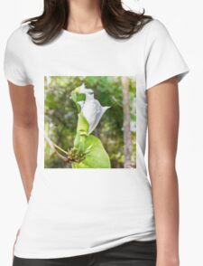 Unfolding beauty of a Butterfly tree flower T-Shirt