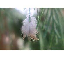 Feathery Joy Photographic Print