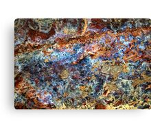 Prismatic Dogmatic Canvas Print