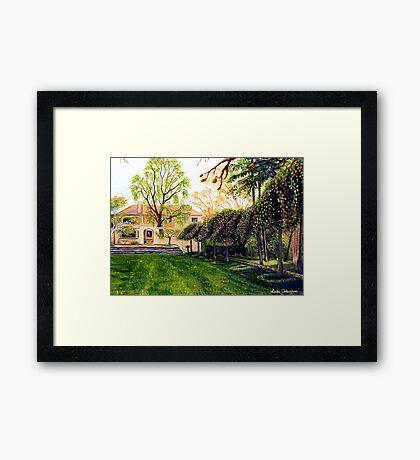 Everglades, Blue Mountains Framed Print