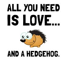 Love And A Hedgehog by AmazingMart