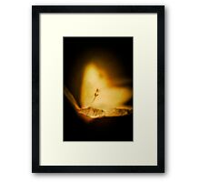 Feeling Flowering Fire Framed Print
