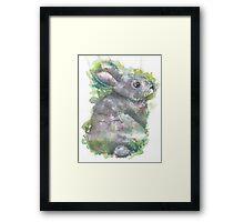 Nature Rabbit Framed Print