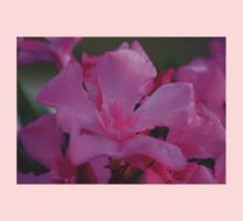 Pink Oleander Flower With Green Leaves in the Background  Kids Clothes