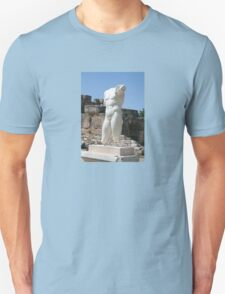 Collosal Torso of Naked Male God in Hadrian Bath of Aphrodisias T-Shirt