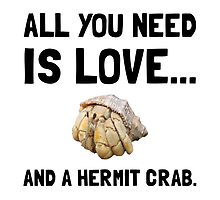Love And A Hermit Crab by AmazingMart