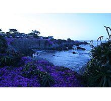 Pebble Beach Purple Cover Photographic Print