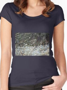 Bunny Tail Grass Blowing in the Wind Women's Fitted Scoop T-Shirt