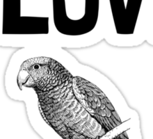 Love And A Parrot Sticker