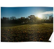 Golden Dew Autumn Sunrise Poster