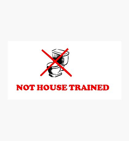 ABDL -  Not House Trained Photographic Print