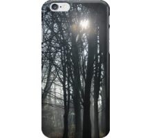 Park woodlands . winter light  iPhone Case/Skin