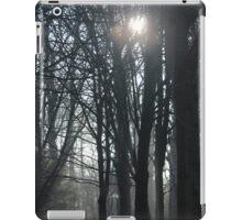 Park woodlands . winter light  iPad Case/Skin