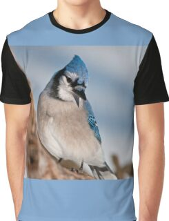 Blue Jay Graphic T-Shirt