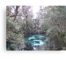 the Real Florida Canvas Print