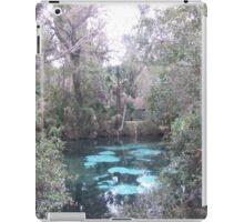 the Real Florida iPad Case/Skin