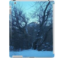 Frozen Rockies  iPad Case/Skin