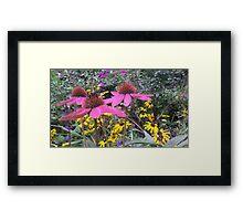 Johns Garden Framed Print