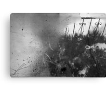 after rain Canvas Print