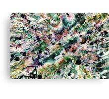 Active Amongst Clouds Canvas Print