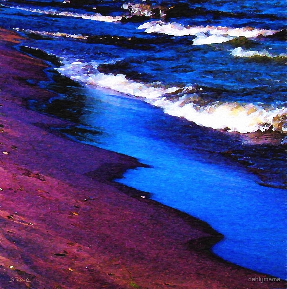 Lake Erie Shore by Shawna Rowe