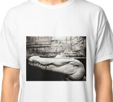 Albino Alligator Photography  Classic T-Shirt