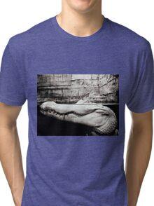 Albino Alligator Photography  Tri-blend T-Shirt