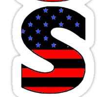 USA Sticker