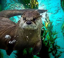 Sea Otter by ganieda