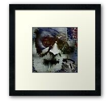 Who Cares Have Fun Framed Print