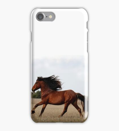 Cheval iPhone Case/Skin