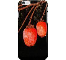 Persimmons at Sunrise iPhone Case/Skin
