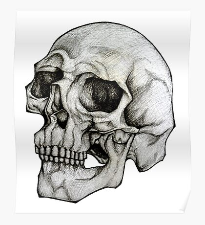 Realistic Skull Sketch Design Poster