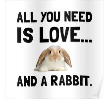 Love And A Rabbit Poster
