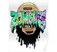 flatbush zombies 4 Poster