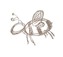 Bee Sketchy Photographic Print