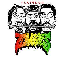 flatbush zombies 6 Photographic Print