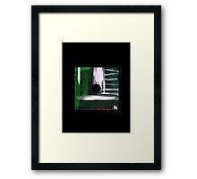 Floppy 30 Framed Print