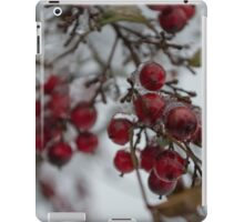 Frosted American Holly  iPad Case/Skin