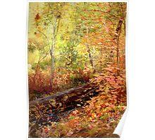 Autumn In Sedona Poster