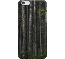 The Matrix Codes a Forest iPhone Case/Skin