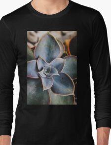 close up of succulent Long Sleeve T-Shirt