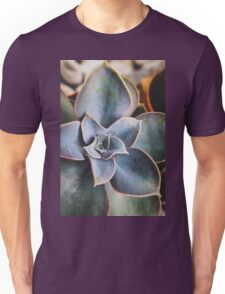 close up of succulent Unisex T-Shirt
