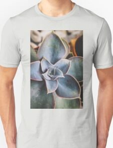 close up of succulent T-Shirt
