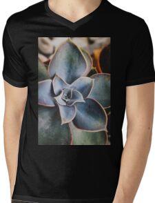 close up of succulent Mens V-Neck T-Shirt