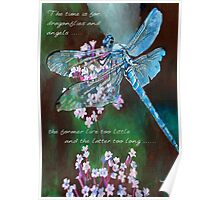 The Time Is For Dragonflies and Angels Poster