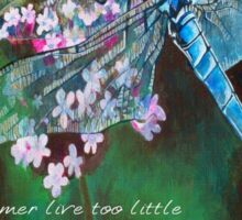 The Time Is For Dragonflies and Angels Sticker