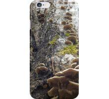 Shroom Tree iPhone Case/Skin