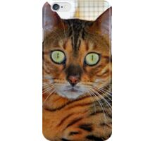 PUSSY CAT LOVE, BENGAL CATS iPhone Case/Skin