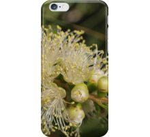 Gum Flower iPhone Case/Skin